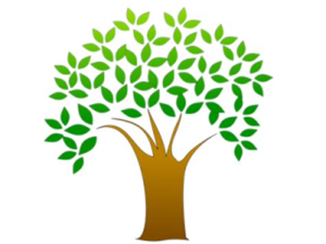 Essay on trees and plants